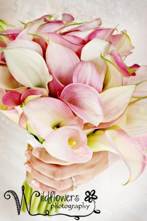 Kealerflowers2